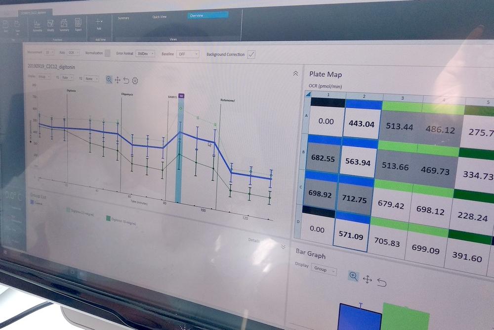 Анализ результатов на приборе Seahorse_0